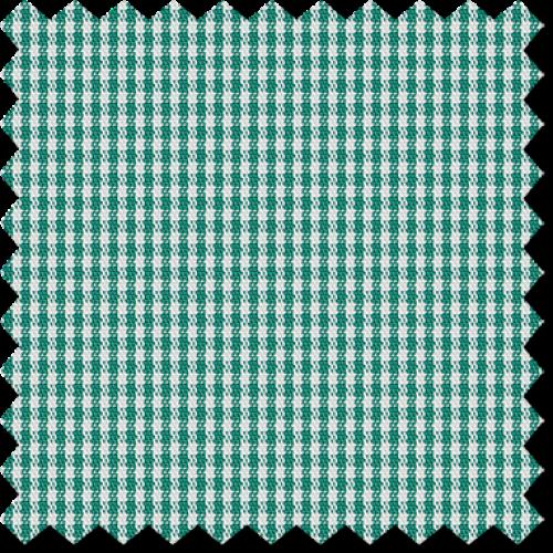 Cape Horn 0610