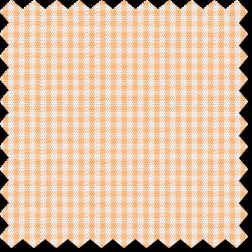 Cape Horn 0823